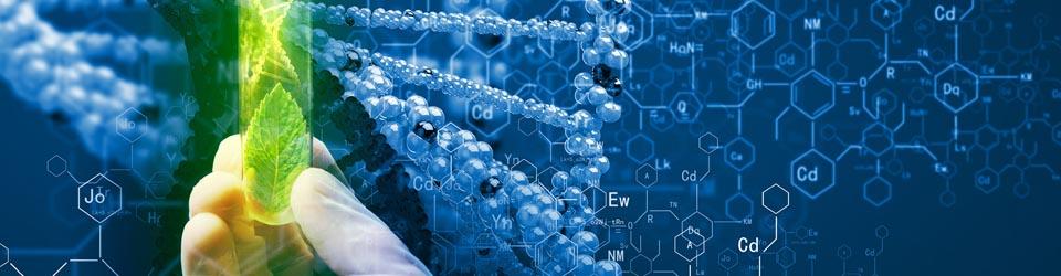 Кафедра біотехнології, біофізики та аналітичної хімії