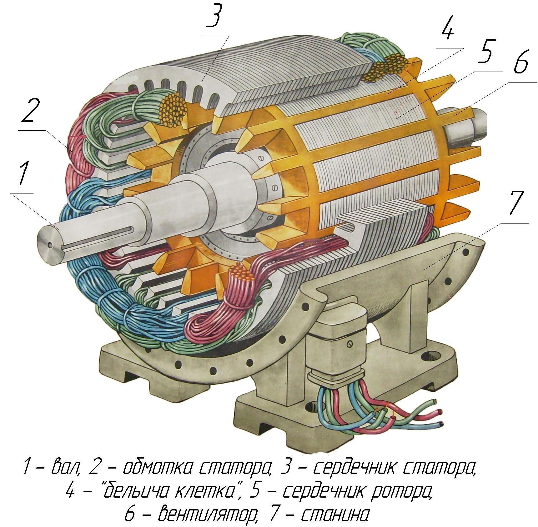 34.Устройство асинхронного двигателя с короткозамкнутым ротором