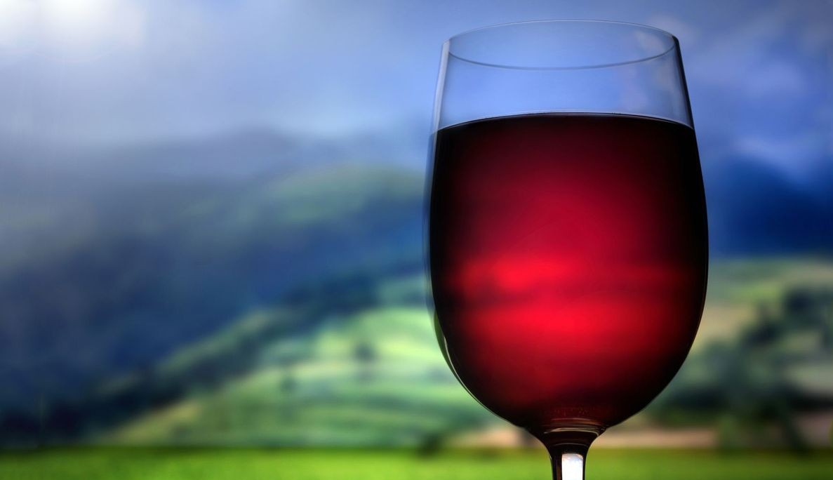Состав вина - Антоцианы