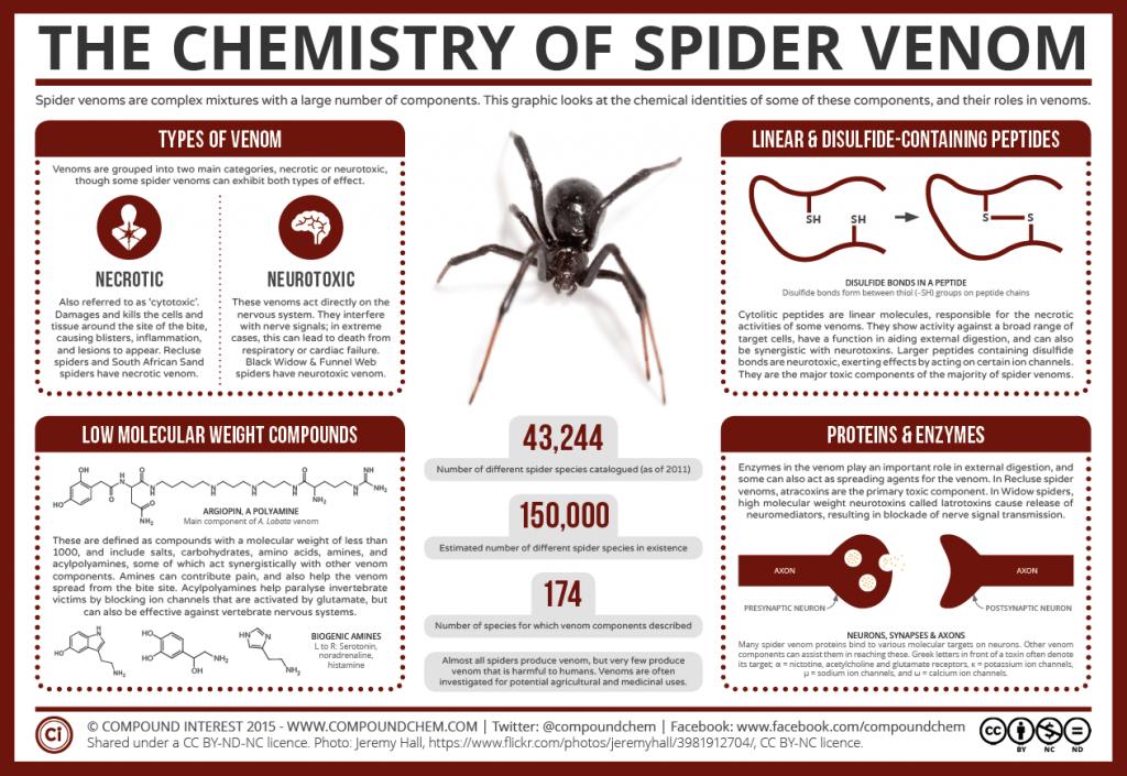 Химия ядов пауков